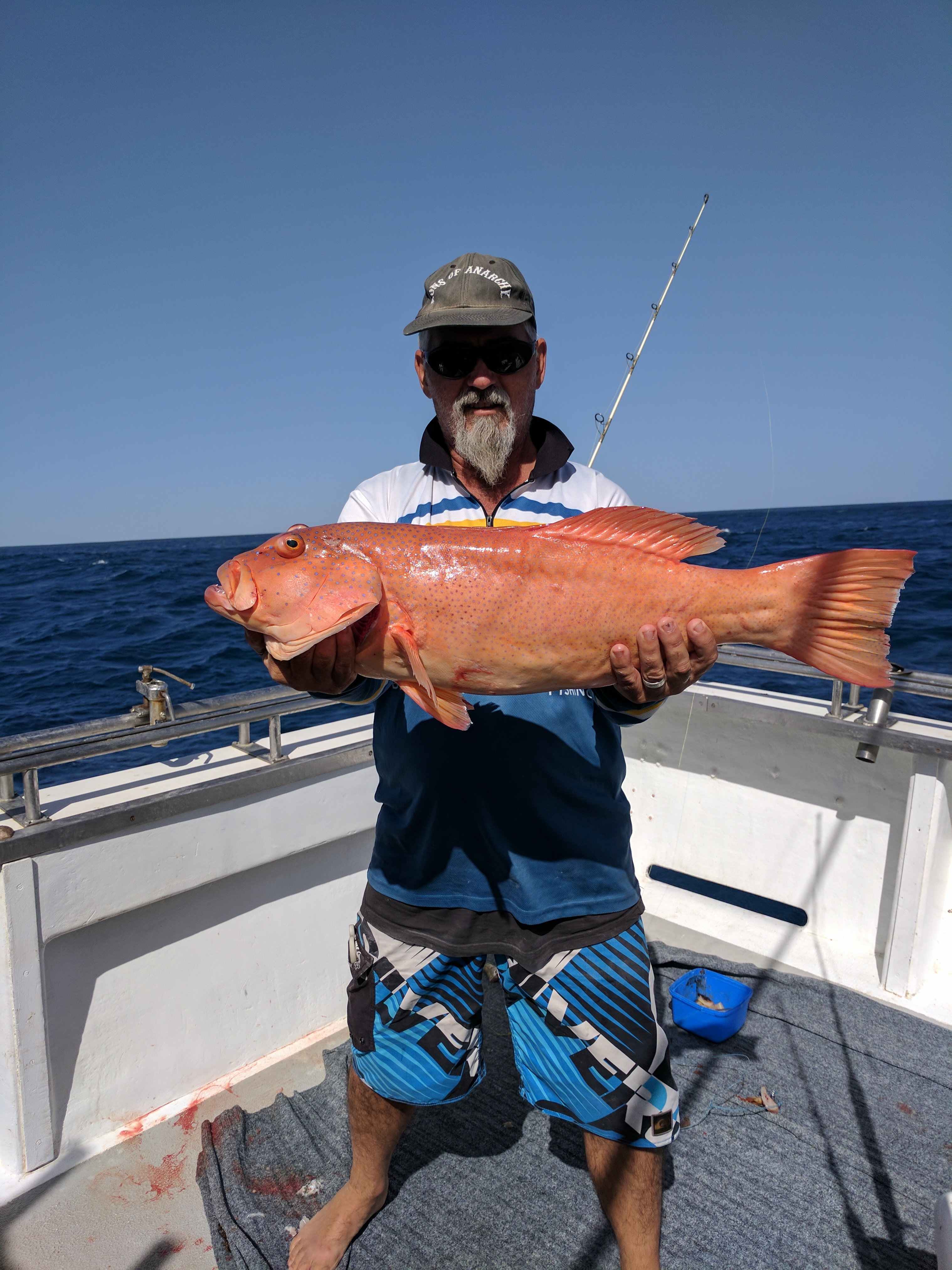 Schmidt family private charter mahi mahi fishing charters for Private fishing charters